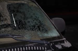 windshield-3-30