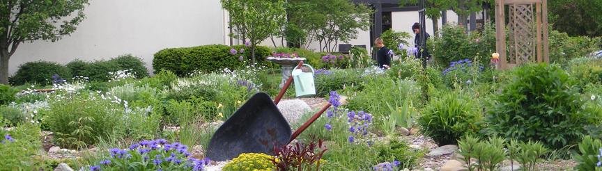 library-garden-crop-original