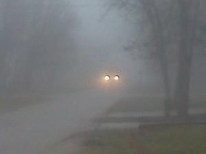 fog 12-21-2011-1_opt