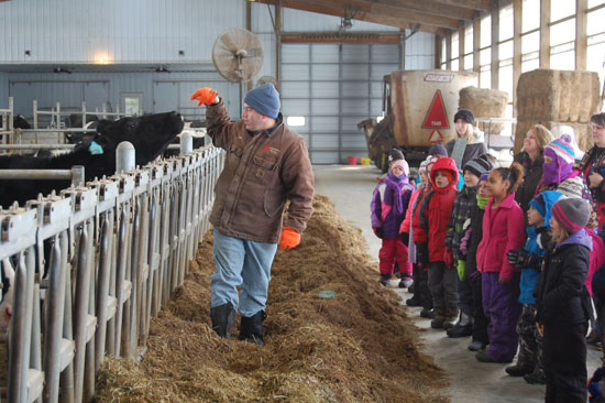 Inside the compost bedding pack barn at Weis-Way Farm.