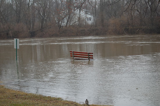 flooding-dh-1