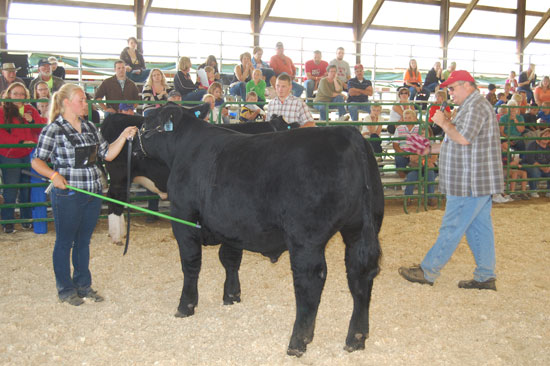 Christy Schneckloth and her steer in the show ring Thursday.