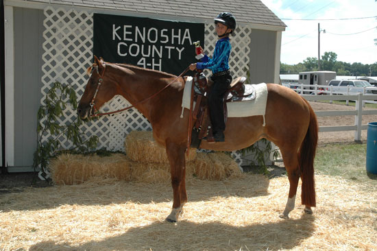 2013-sat-horse-10-submitted