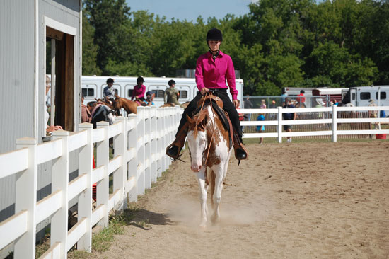 2013-sat-horse-3