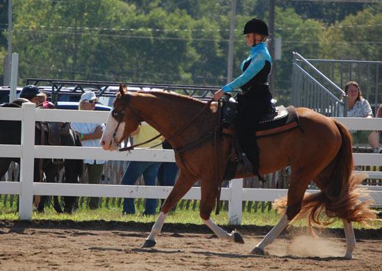 2013-sat-horse-5