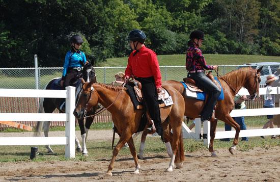 2013-sat-horse-8