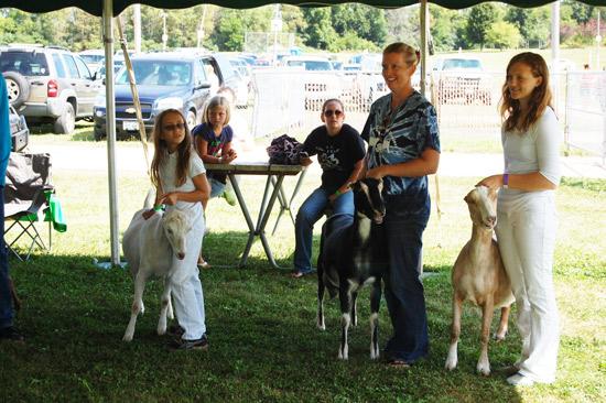 goat-show-fair-2014-3