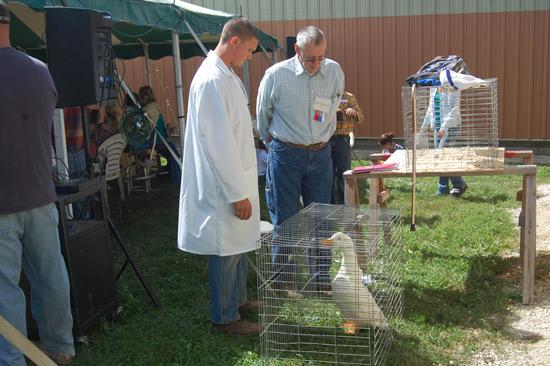 poultry-show-fair-2014-4