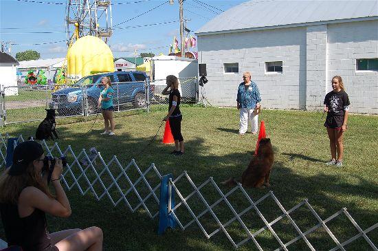 2016 fair dogs 2-opt