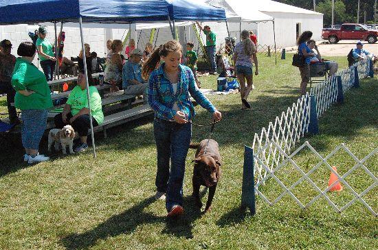 2016 fair dogs 8-opt