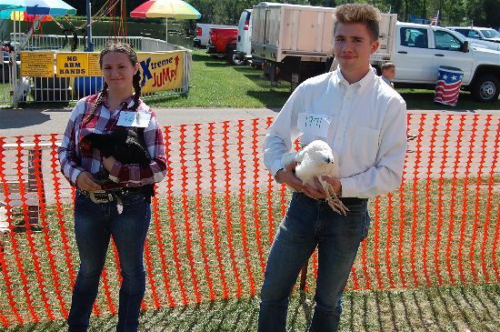 2016 fair poultry 11-opt