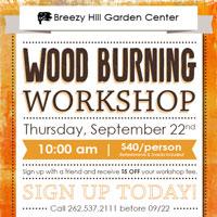 breezy-hill-wood-burning-workshop_2016_thumbnail