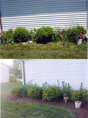 all-star-mulch-before-and-after-1